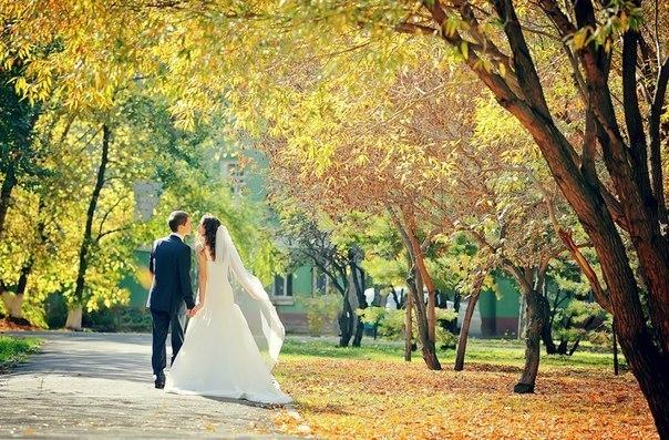 Подготовка и выбор видеосъемка свадьбы 12348