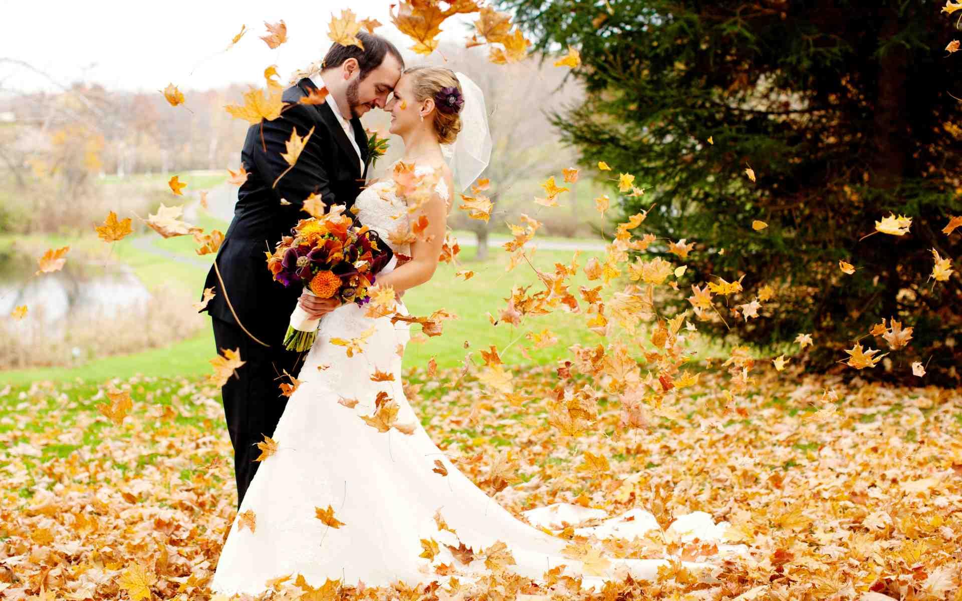 Видеосъемка свадьбы осенью.56579