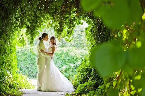 свадьба весной 123456